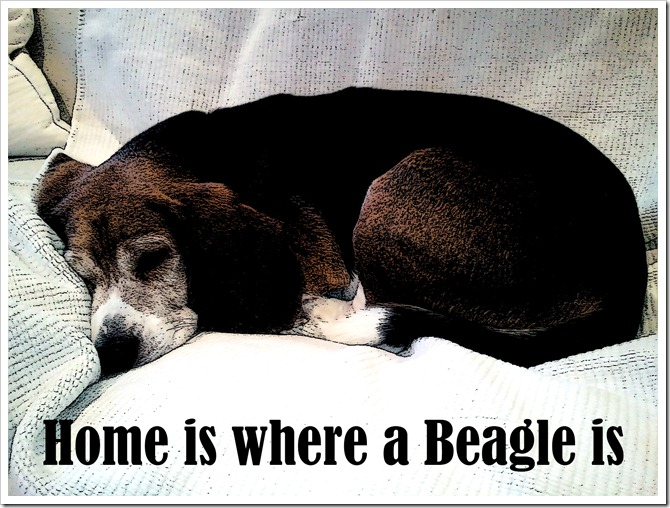 Home is Where a Beagle Is inked